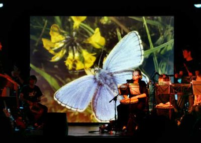 Butterfly Marine Theatre